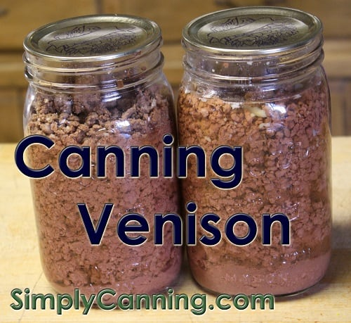 cannning venison ground meat