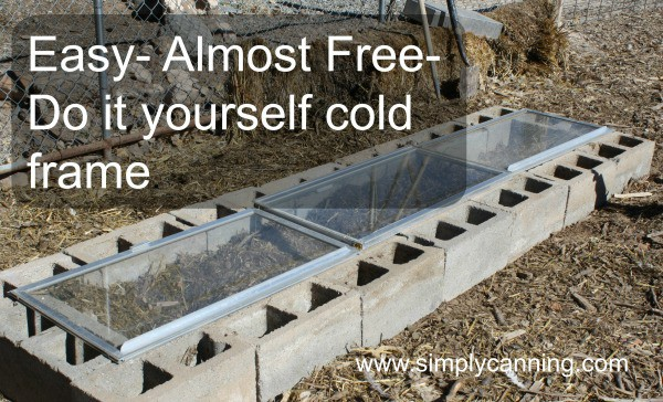 A cold frame made with glass and cinder blocks outside in the wintertime.
