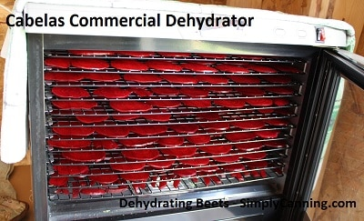 commercial dehydrator review
