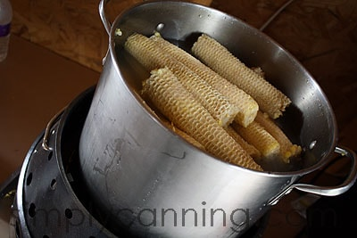 corn cob jelly3