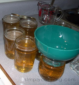 dandelion jelly-2