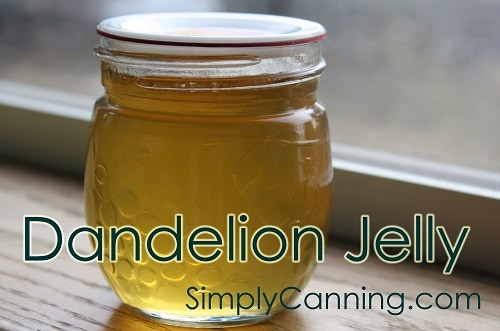 A jar of golden dandelion jelly.