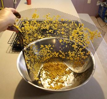 dehydating corn remove corn from trays