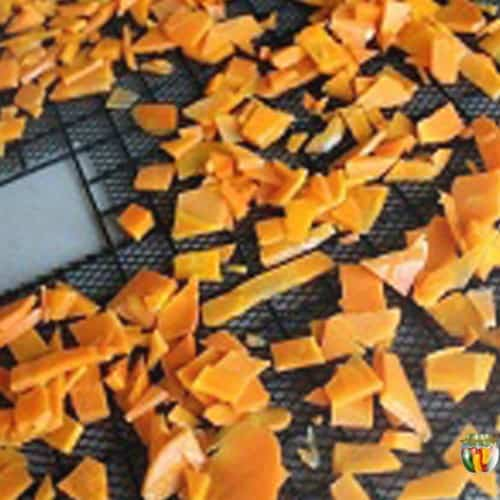 A dehydrator tray covered evenly with bright orange pieces of carrot.