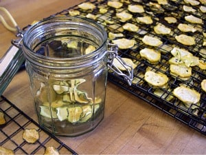 dehydrating food zucchini chips