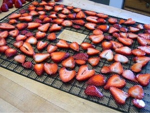 dehydrating fruit strawberries