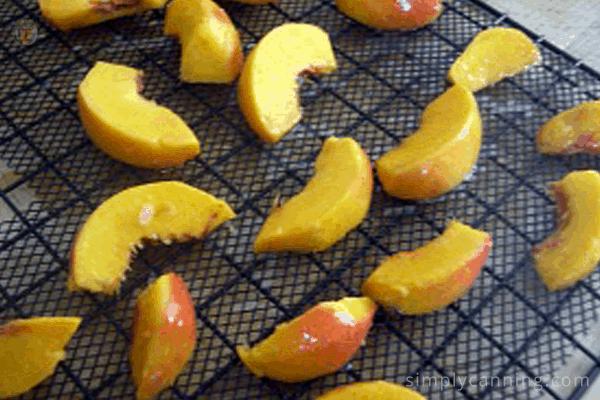 Peach slices on a black dehydrator tray.