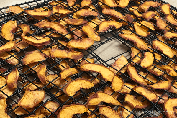 Dehydrated apricot slices on dehydrator trays.