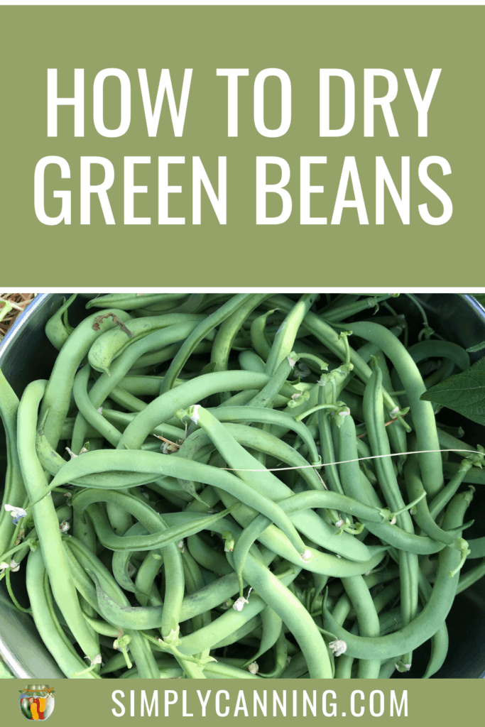 How to Dry Green Beans