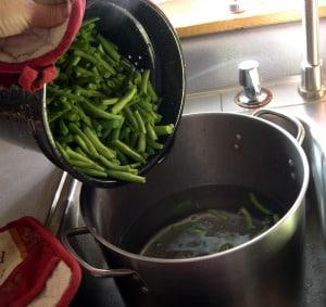 dehydrating vegetables green beans-3