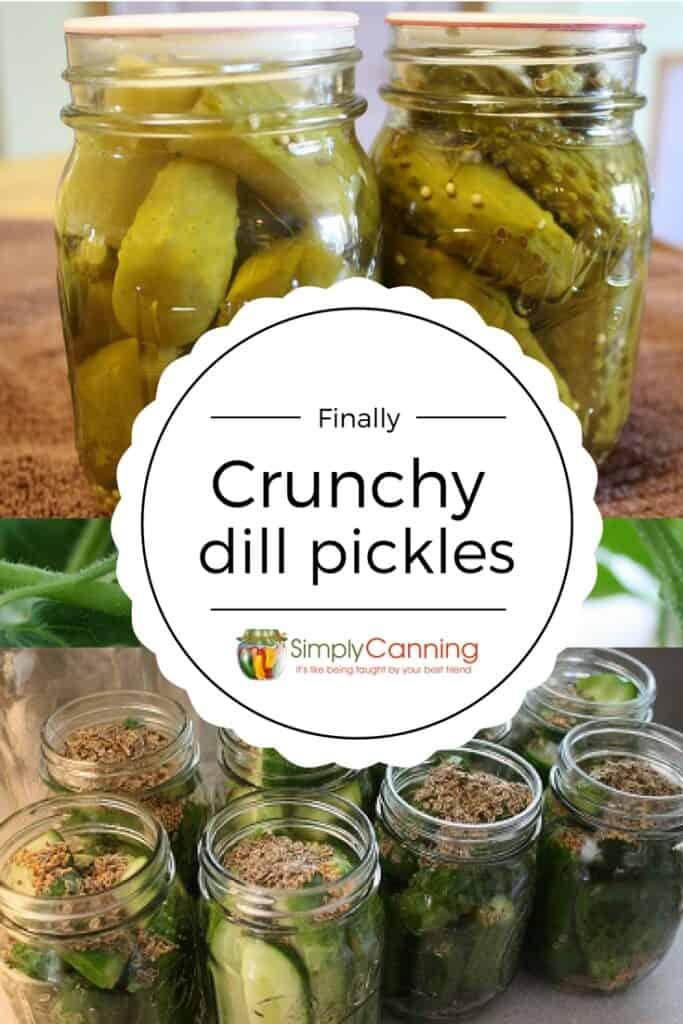 dill pickle recipe pin