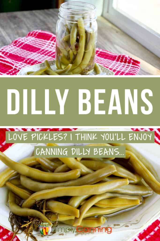 dilly beans pin1
