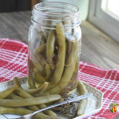 An open jar of dilly beans with a serving of beans to the side.