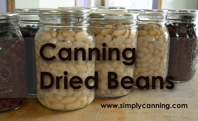 Jars of home canned dried beans.