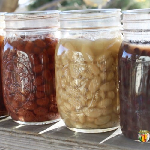 Jars filled with various colors of cooked dry beans.