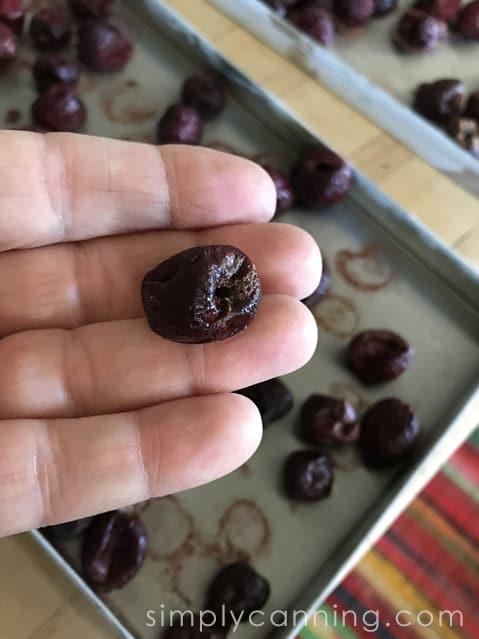 freeze dried cherries-3