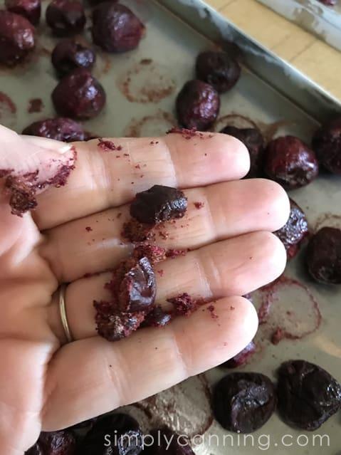 freeze dried cherries-4