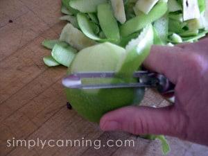 freezing apples-1