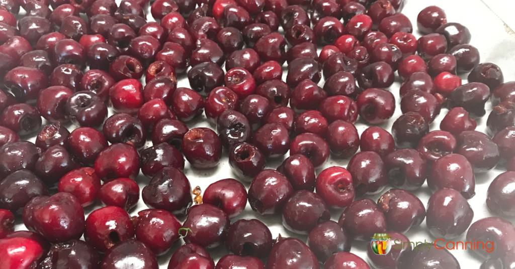 A freezer paper lined tray with pitted red cherries spread over it.