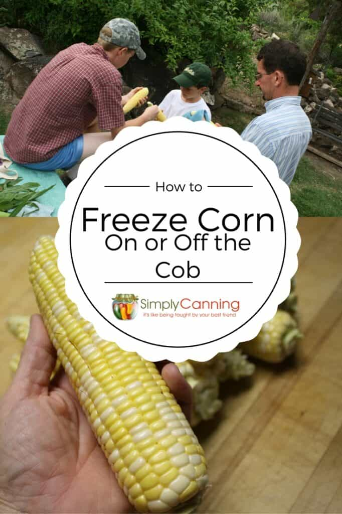 freezing corn pin