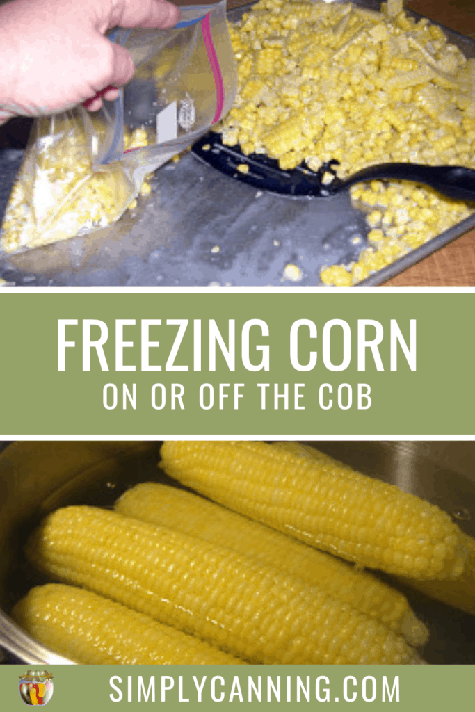 Freezing Corn On or Off the Cob