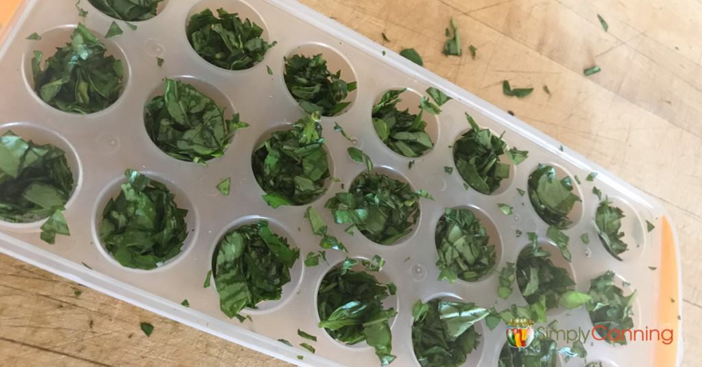 An icecube tray filled with chopped fresh herbs.