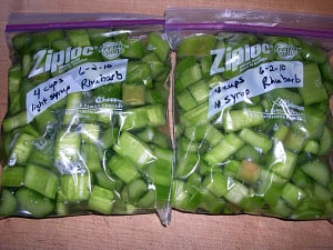 Ziploc bags filled with sliced green rhubarb.