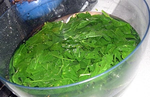 freezing spinach cool