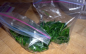 freezing spinach cups