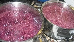 grape jam1