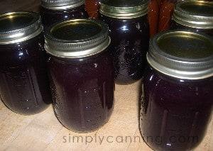 grape jam4