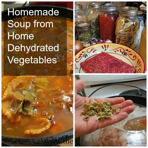 Homemade Soup from Home Dehydrated Vegetables
