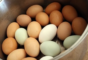 Farm fresh eggs of various colors in a large pot.