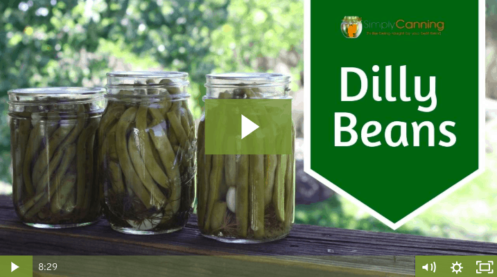 members dilly beans