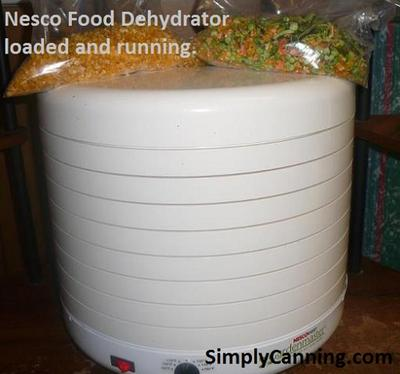 nesco food dehydrator-1