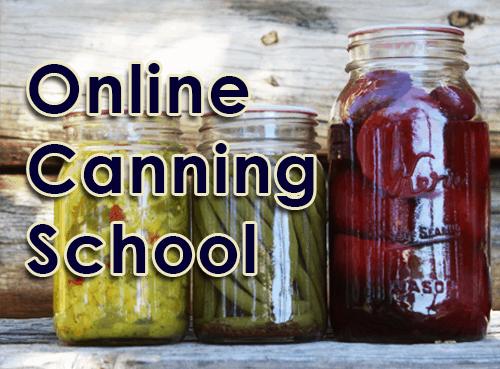 online canning school