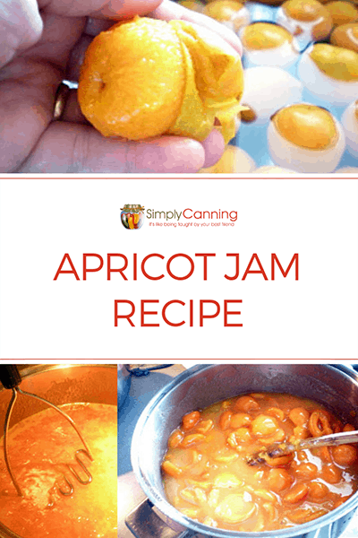 Apricot jam is a delicious treat and SimplyCanning.com shows you how easy it is! Safe to water bath can, this recipe guides you step by step through the process.