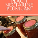 stone fruit jam pin