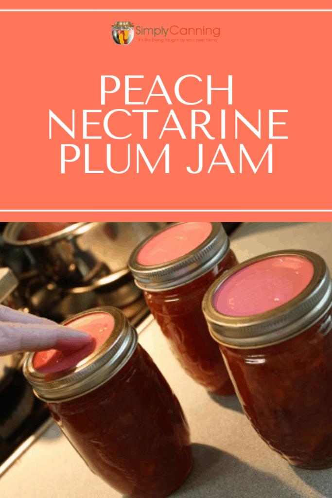 Peach Nectarine Plum Jam