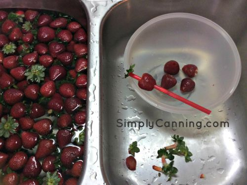 strawberries hulling straw