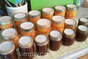 tattler canning lids2