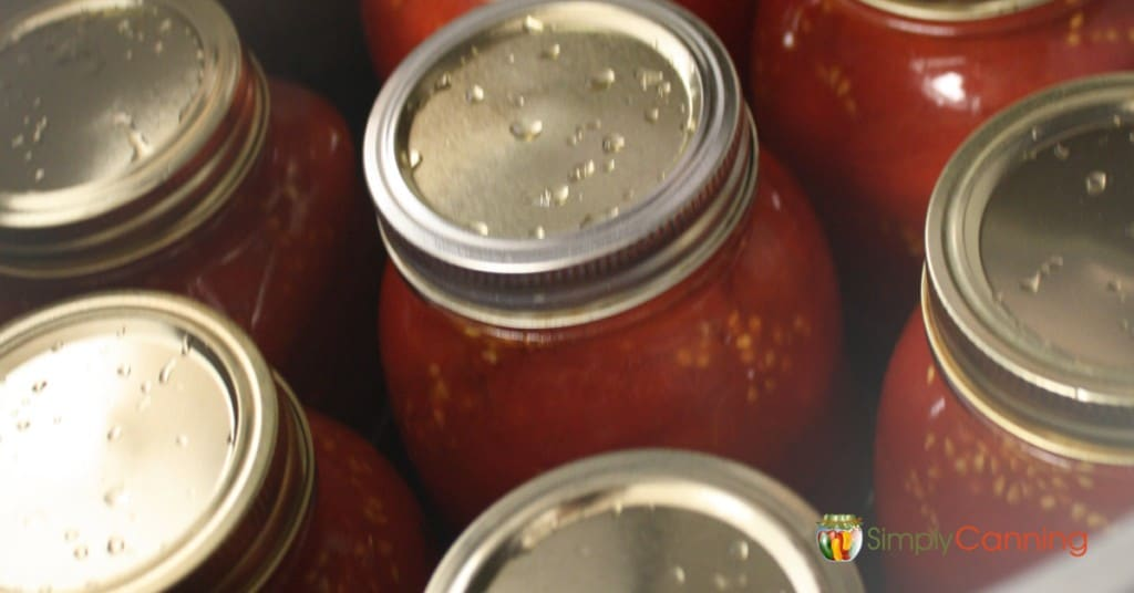 Hot jars of tomatoes packed inside the canner.