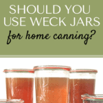 weckjars pin1